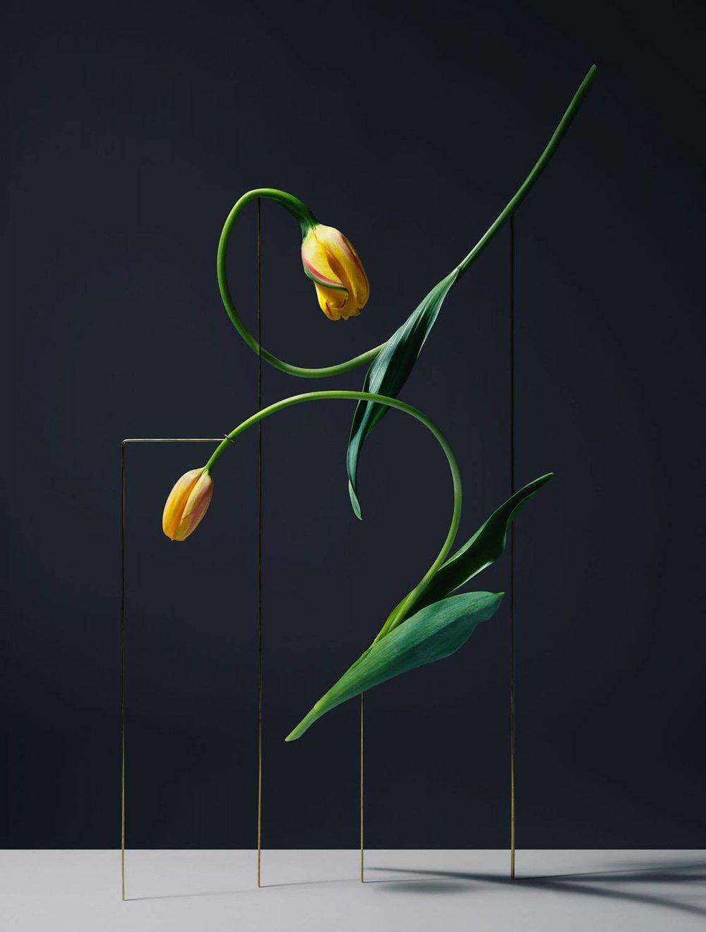 _09272017_Floral Inspo.jpg