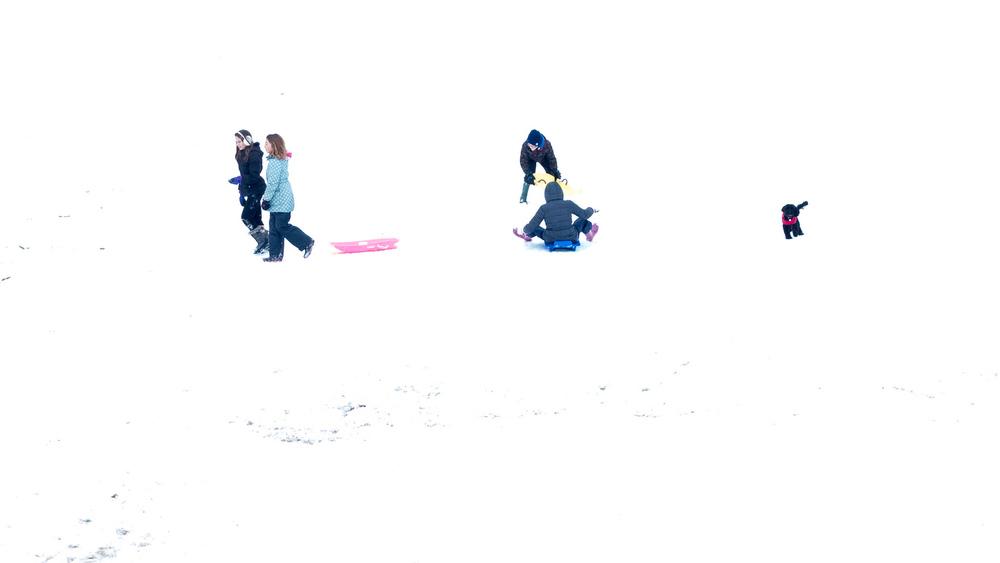 sledging