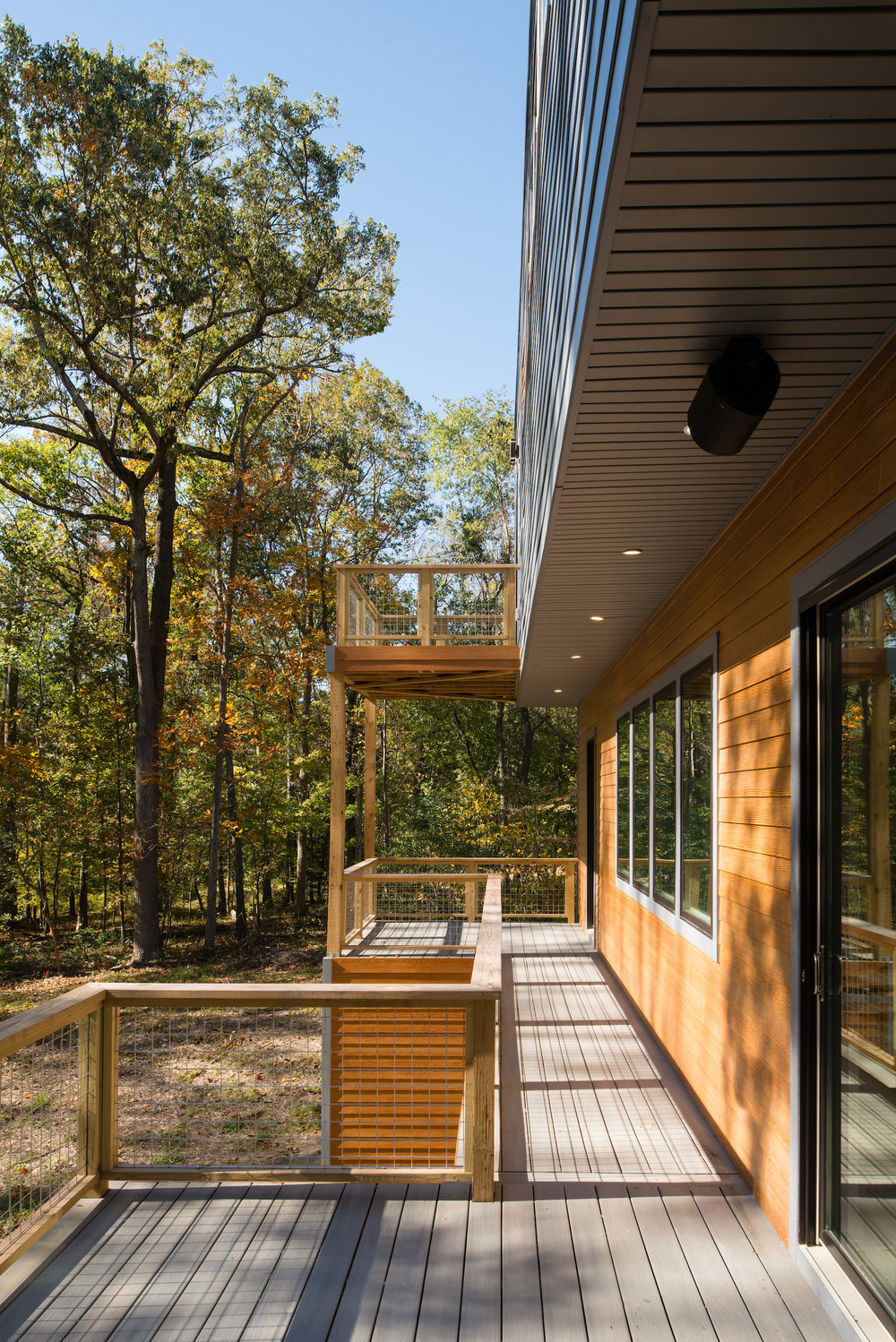 Forest House  Photo Credit: John Cole Photography