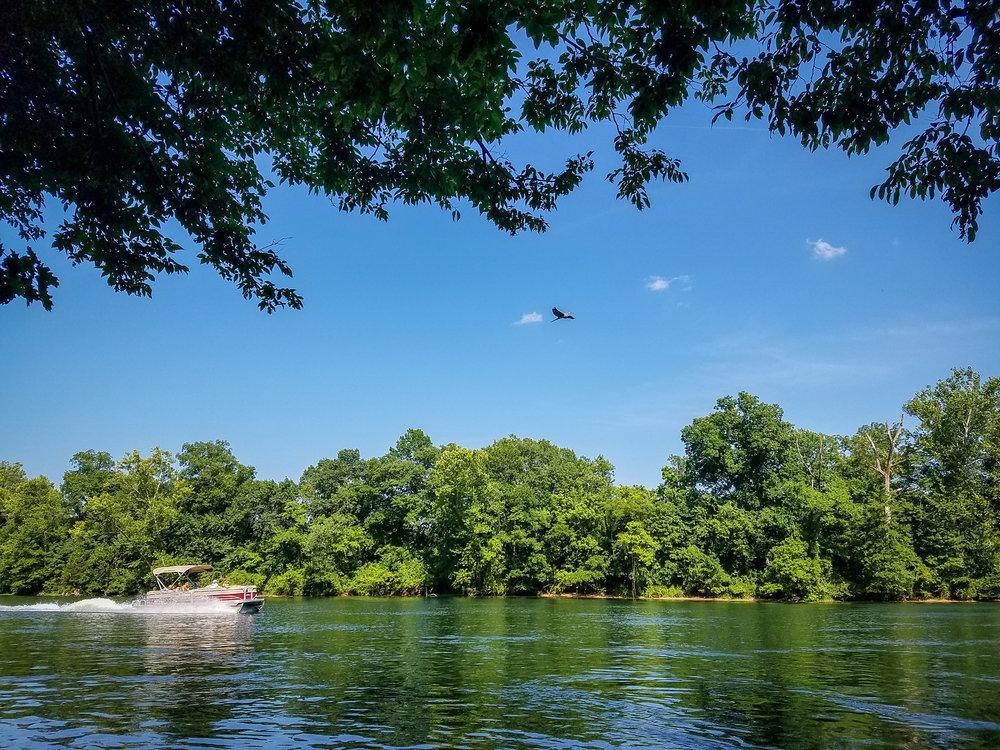 Lakeside forrest wilderness area Branson MO (10).jpg