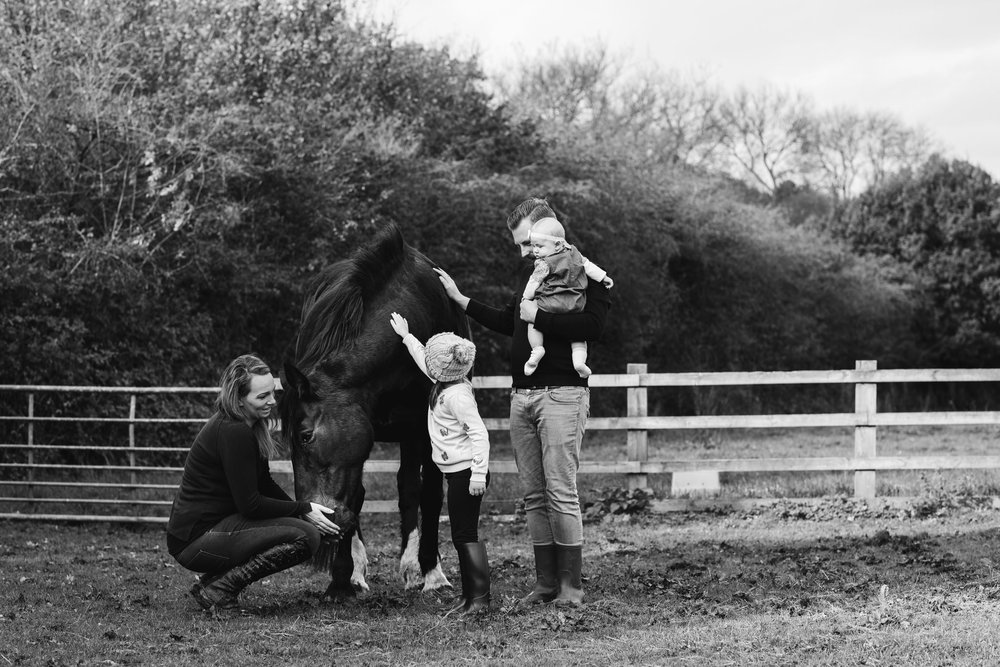 Charl-Horse-Flea-20171029-0146-Kris-Askey.jpg