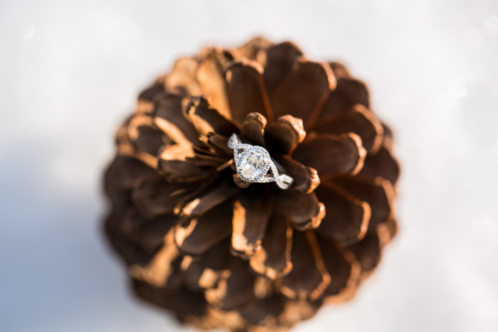 Halo Engagement Ring by Chelsea Bolling Photography Minnesota