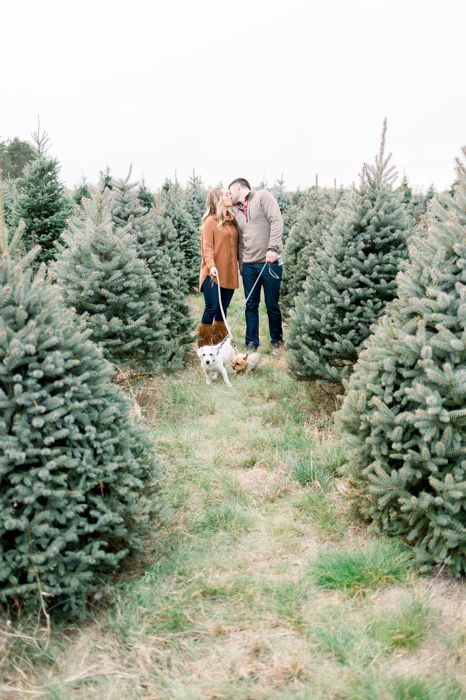 Minneapolis Tree Farm Engagement (19 of 23).jpg