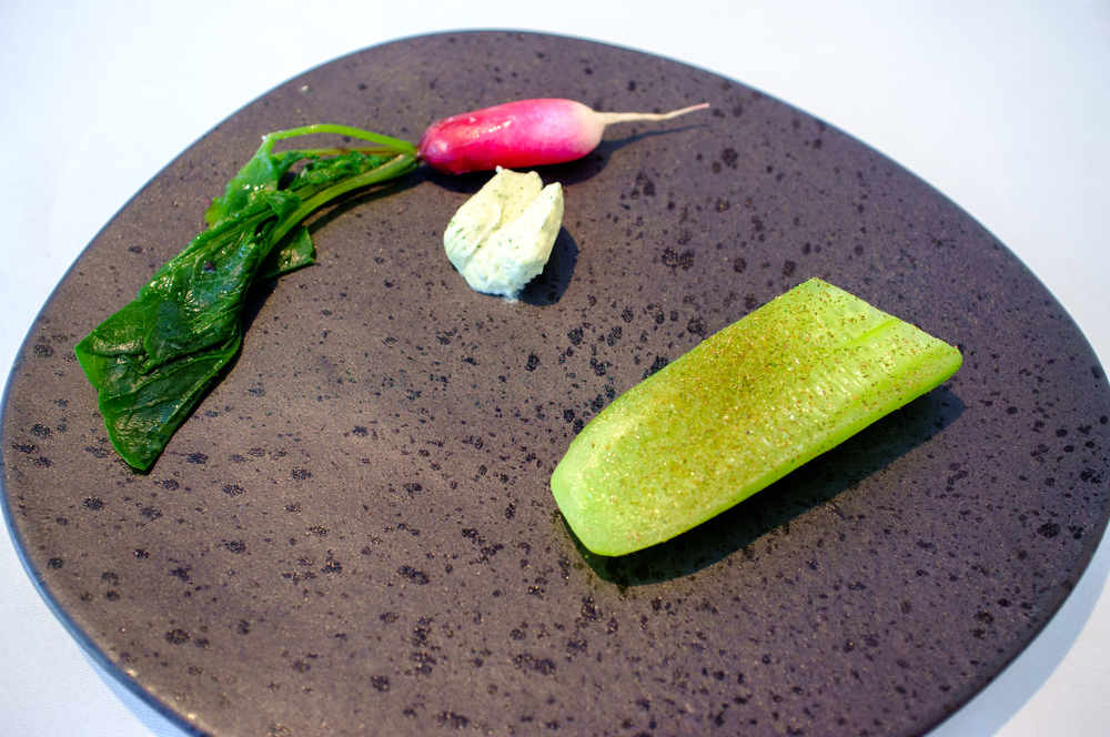 Breakfast radish, cucumber and lemon myrtle, jersey cream