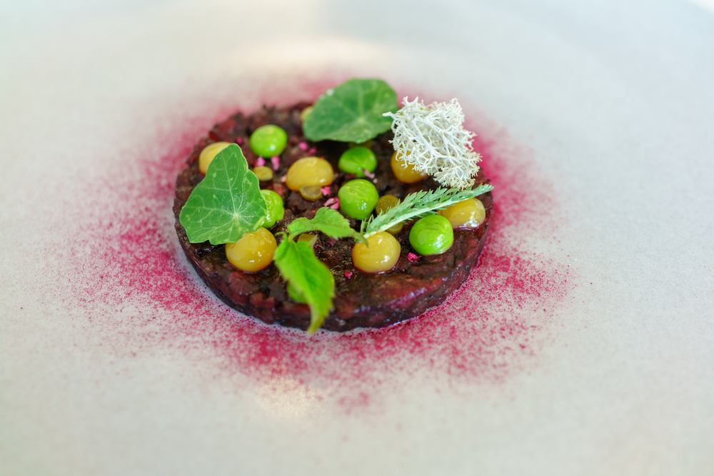 Elk meat from the forests of Saaremaa, ramson stalks, cladonia, black garlic, Restoran Ö, Tallinn