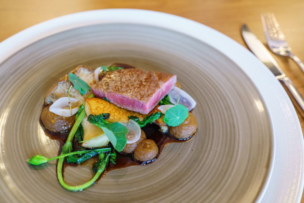 House-aged beef, king trumpet mushroom, garden thyme