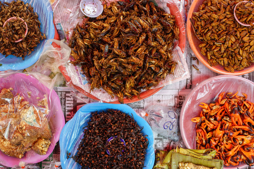 Insects outside Warorot Market