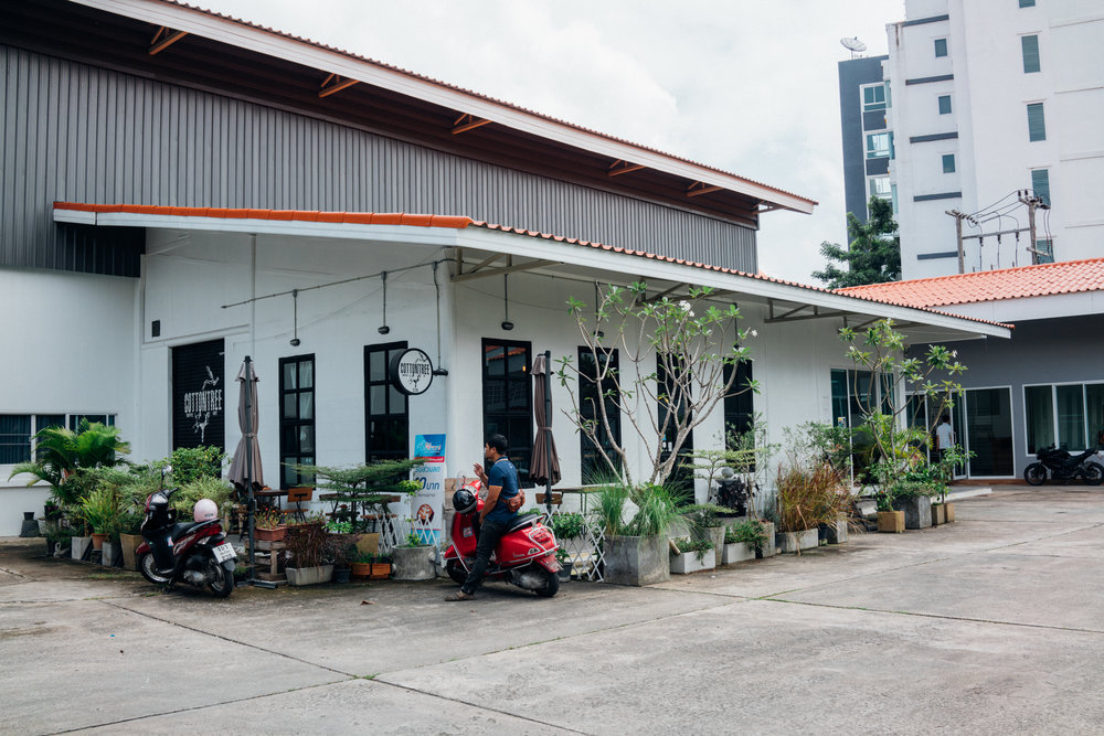 Cottontree Coffee is located within an apartment complex north of Chiang Mai's Maya mall
