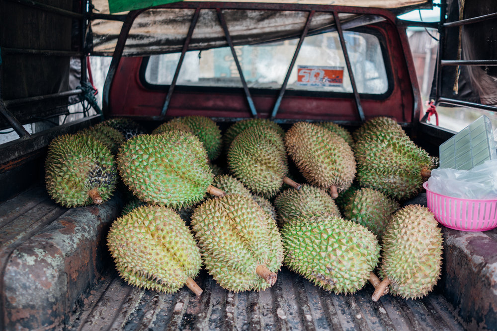 Mon Thong durians are very easy to find all over Thailand