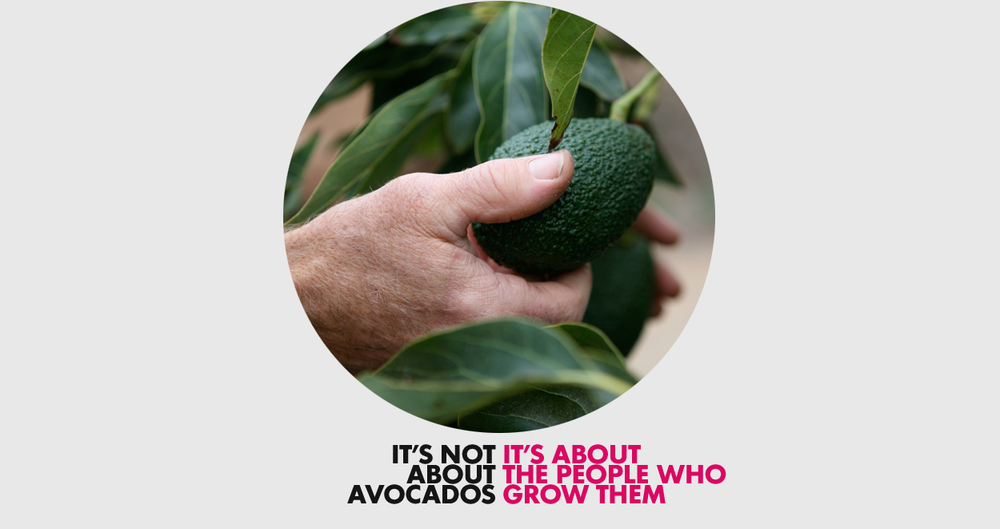 About_Avocado.jpg