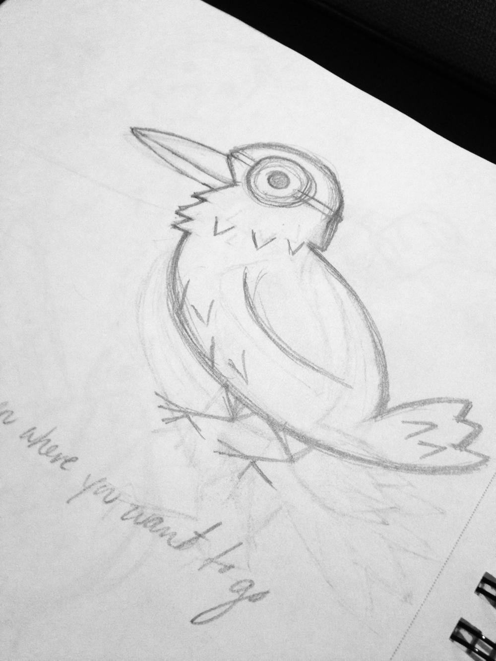raven2_edit.jpg