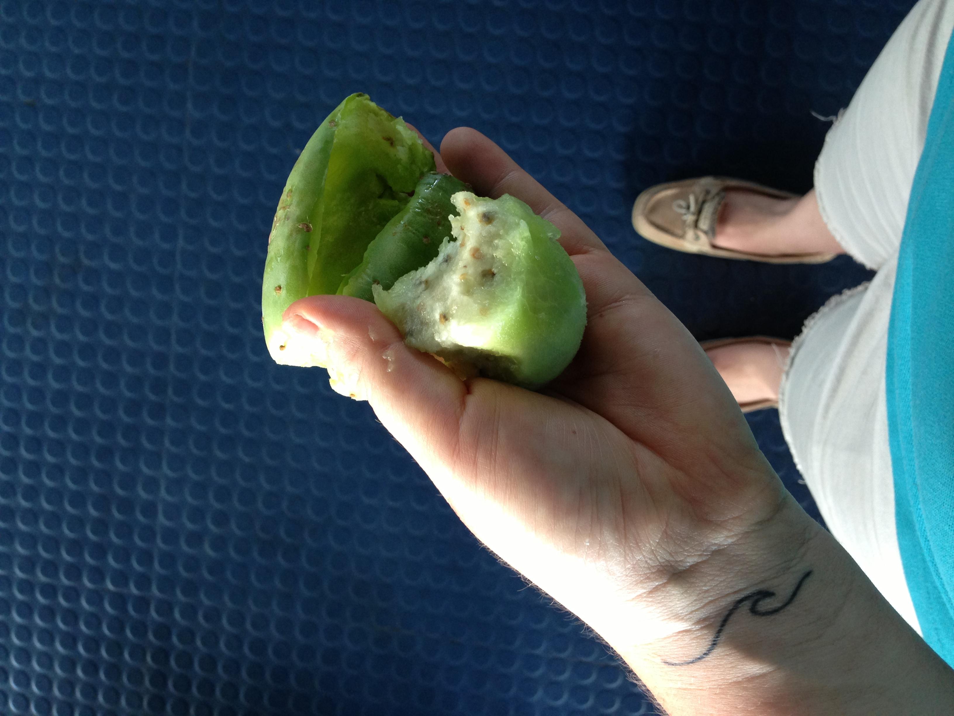 cactus fruit?