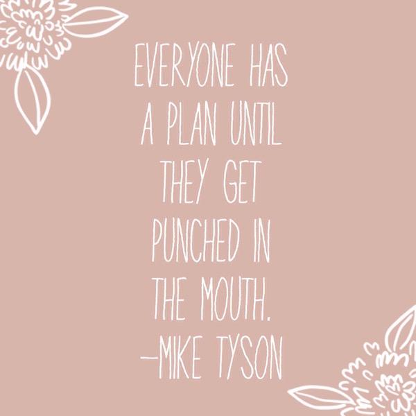 everyone has a plan.jpg