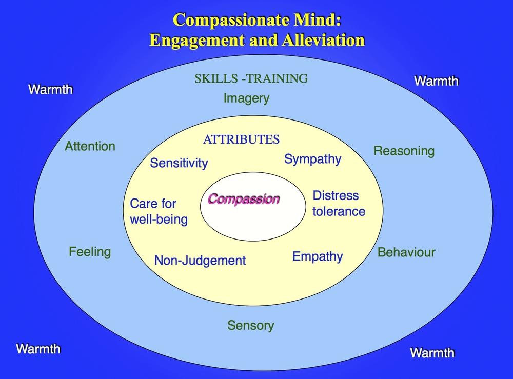 theoretical framework compassion fatigue essay