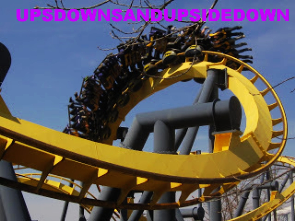 UPS DOWNS AND UPSIDE DOWN - ROLLER COASTERS AND THEME PARKS
