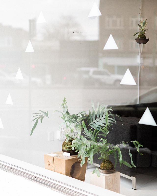 Grateful for my home away from home, @theaviary_ca.  Photo by @cpienaarphoto ⠀⠀⠀⠀⠀⠀⠀⠀⠀ #coworkspace #coworking #designstudio #canadiandesign #whiteinterior #cerealguides #designmilkeveryday #designmilk #wallpapermagazine #eastvan #storefront #westernliving #theaviary_ca #andreamcleanstudio