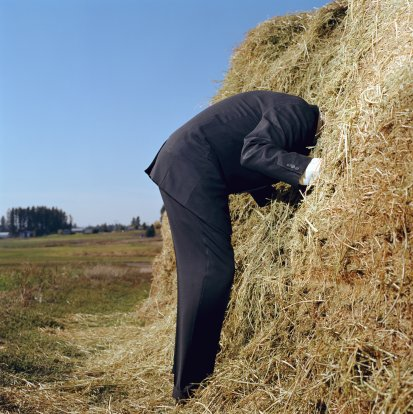 Social Star helps you to find the needle in the haystack