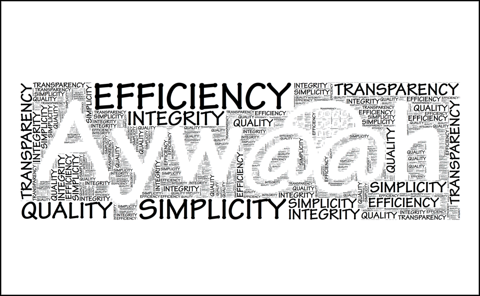 Our Values: Integrity, Simplicity, Efficiency, Transparency, and Quality