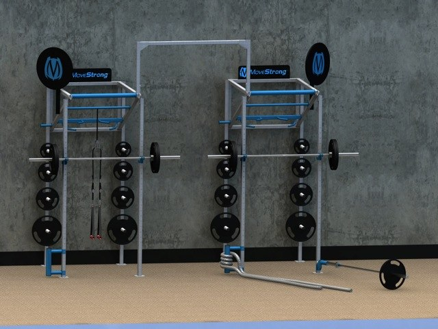 Wall mount functional training equipment