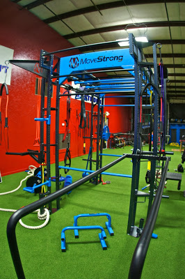 Functional fitness cage