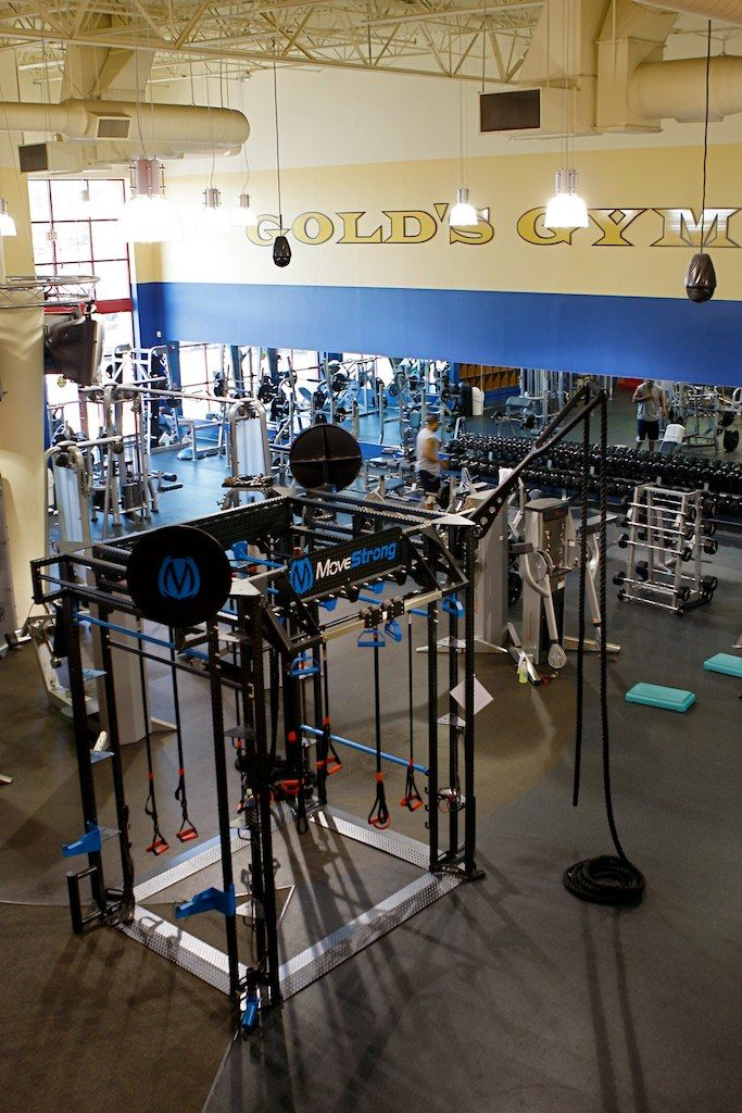 Golds gym functional training equipment