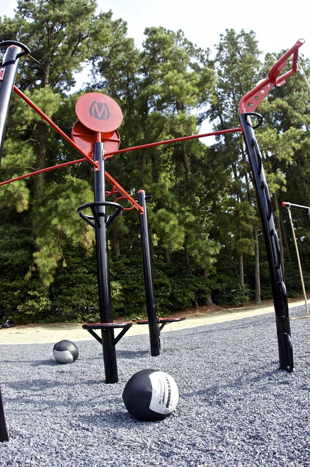 Pullup bar medicine ball taggert