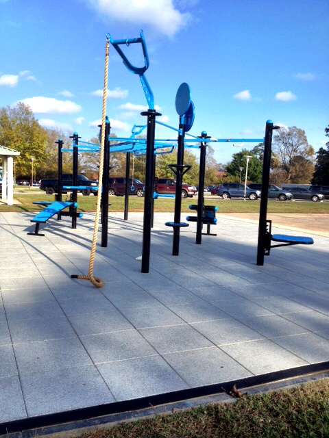 Coast-Guard-Yorktown- T-Rex 10 Post - functional-fitness-outdoor.JPG