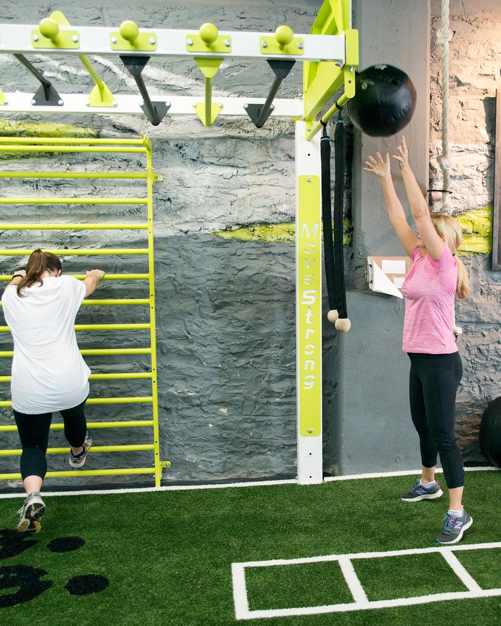 Medicine ball toss wall target