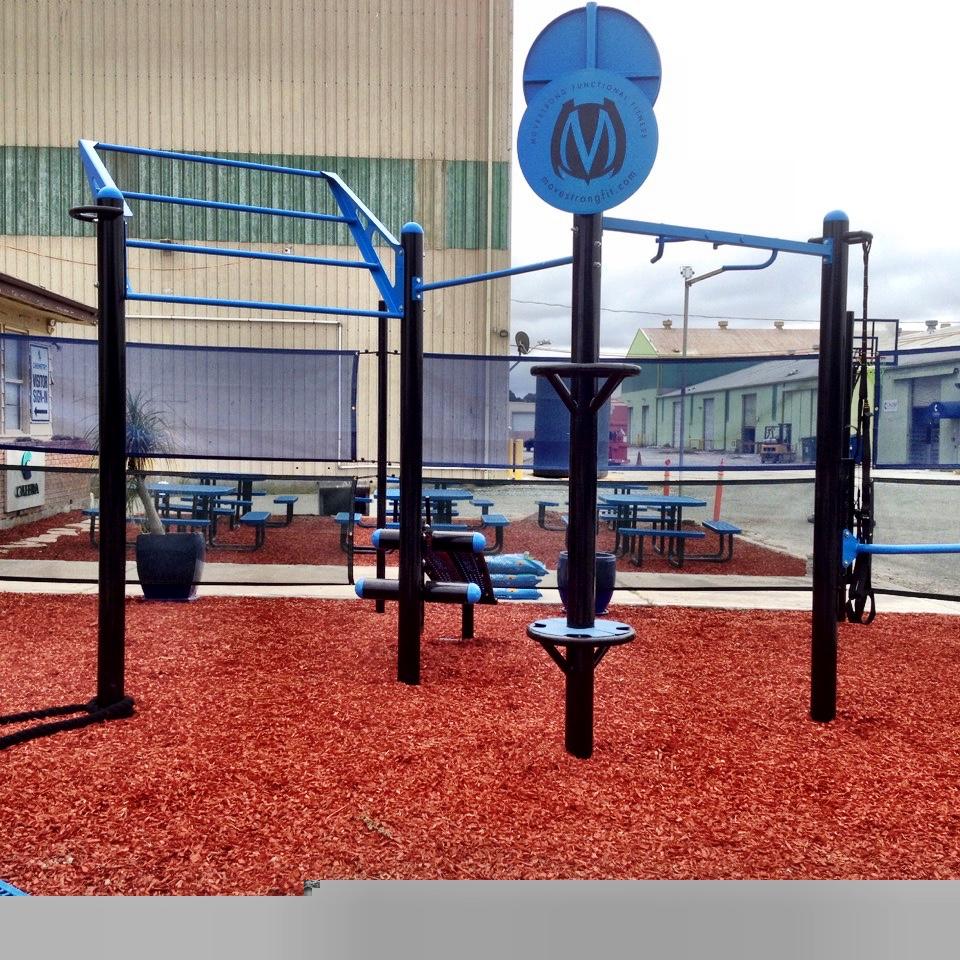 T-Rex outdoor fitness