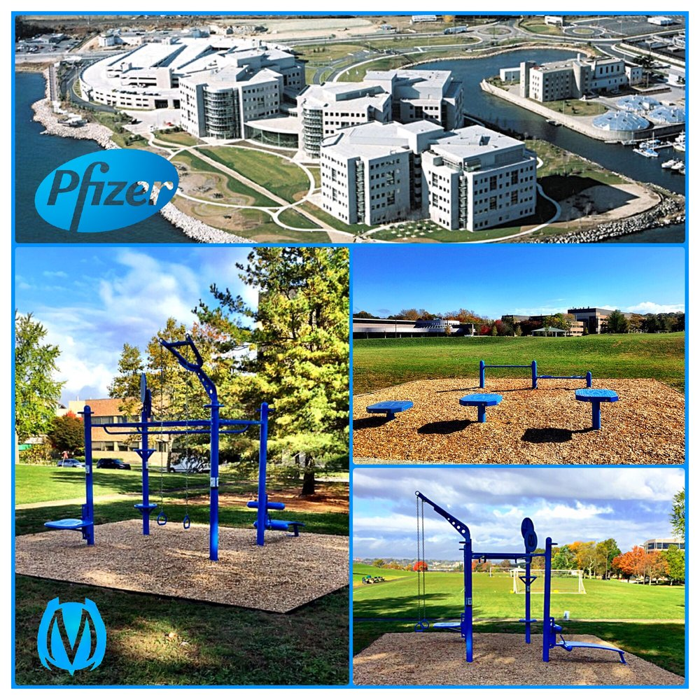 Pfizer employee outdoor fitness training area using MoveStrong Functional Fitness.