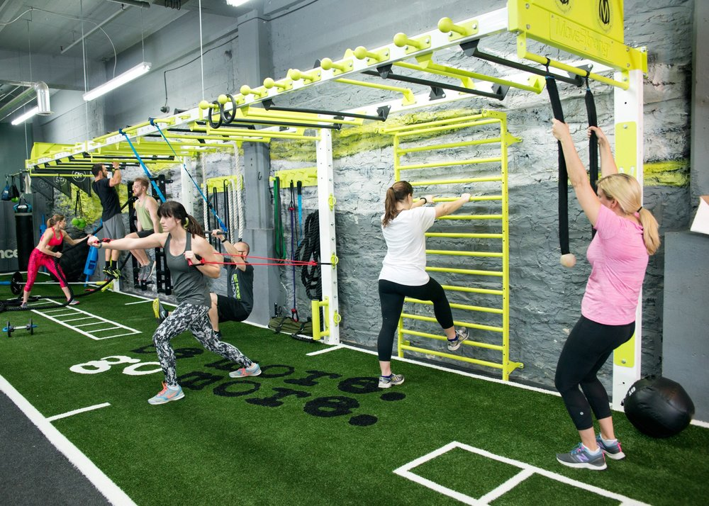 Nova wall fts fitness bridge