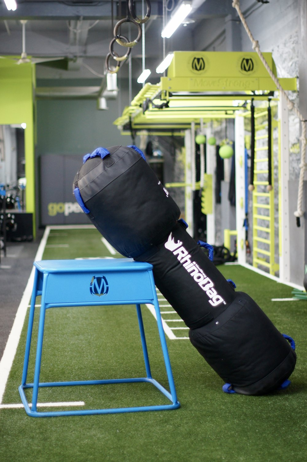 Durable and rugged strength training bag