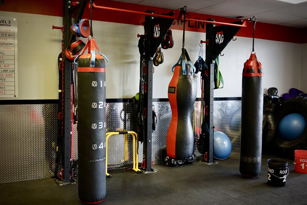 Modular heavy bag stand with pull-up bars