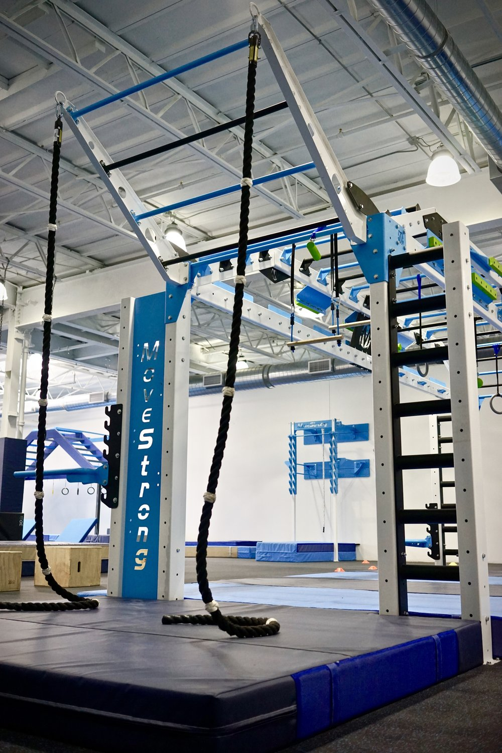 Rope climb and tiered climber bar
