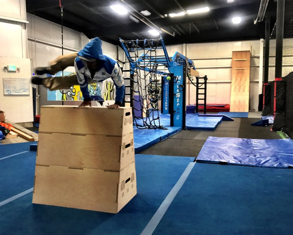 MoveStrong Vault Boxes
