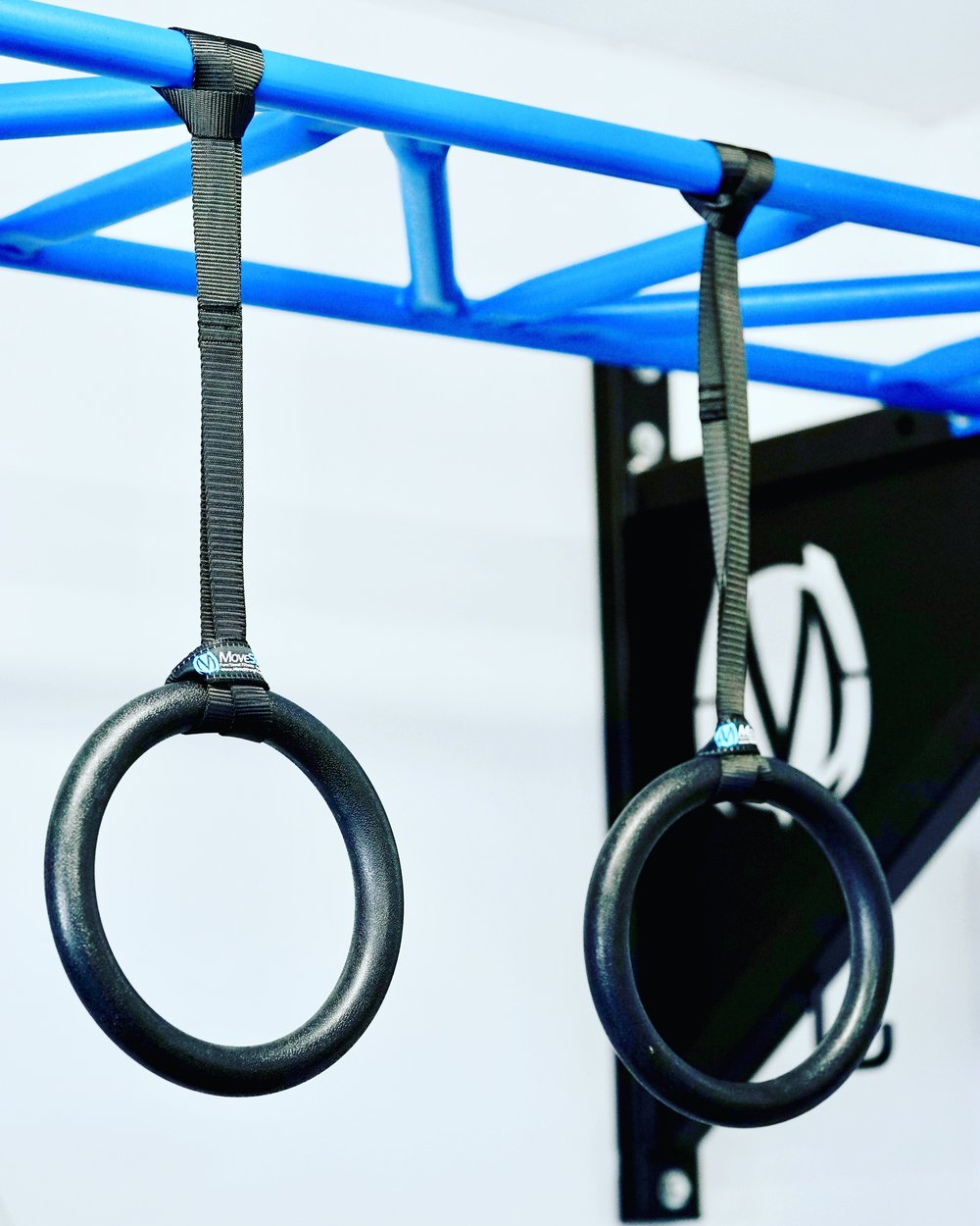 Fitness rings & strap