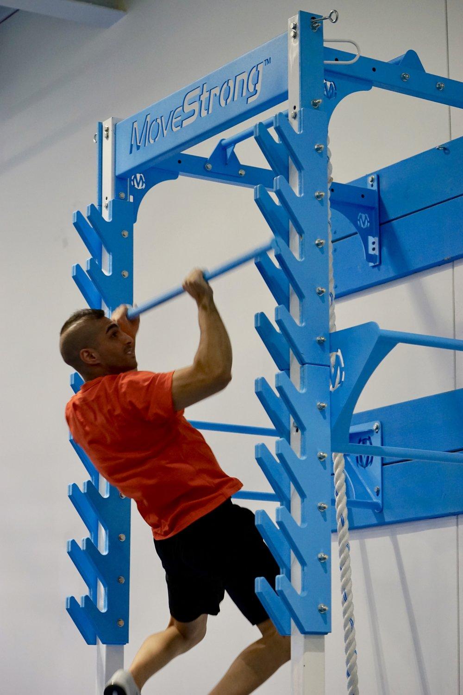 Salmon Ladder training