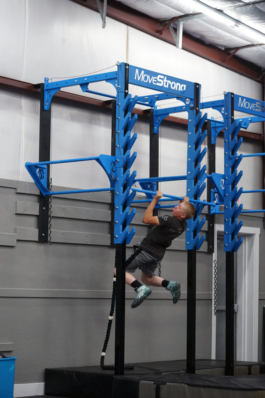 Wall mount Salmon Ladder