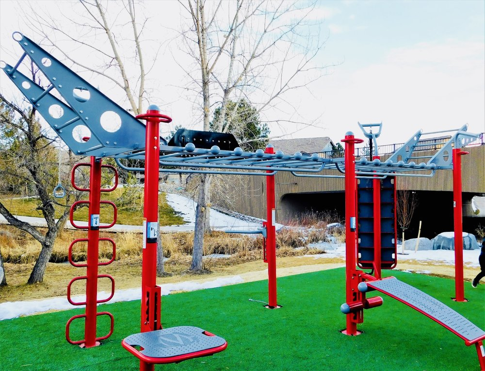 MoveStrong T-Rex Outdoor Fitness