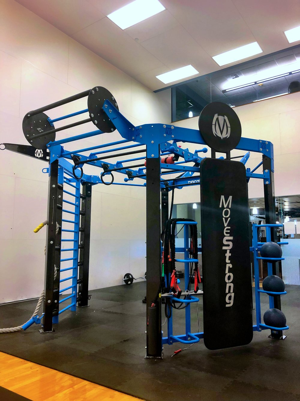 The Revolver Pull-up bar