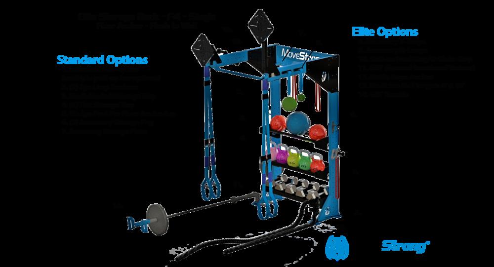 Custom Functional Fitness Storage Solution