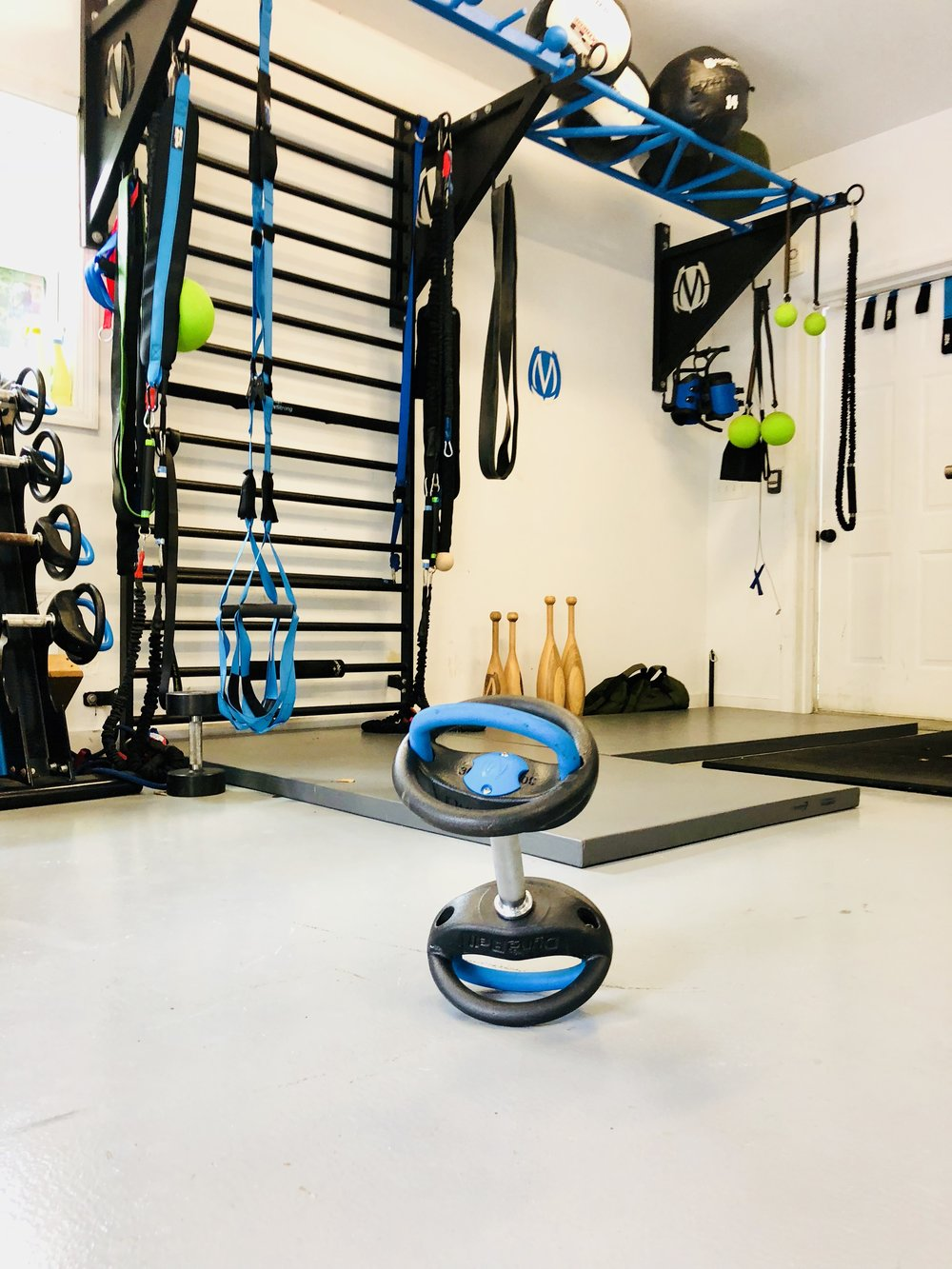 Garage Gym MoveStrong DynaBell