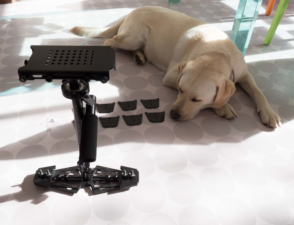 Glidecam HD-2000 - sold on ebay. Fifi fiercely on guard.