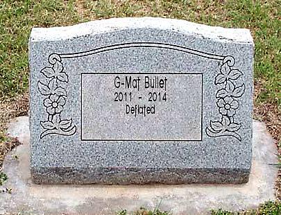 RIP the G-Mat Bullet