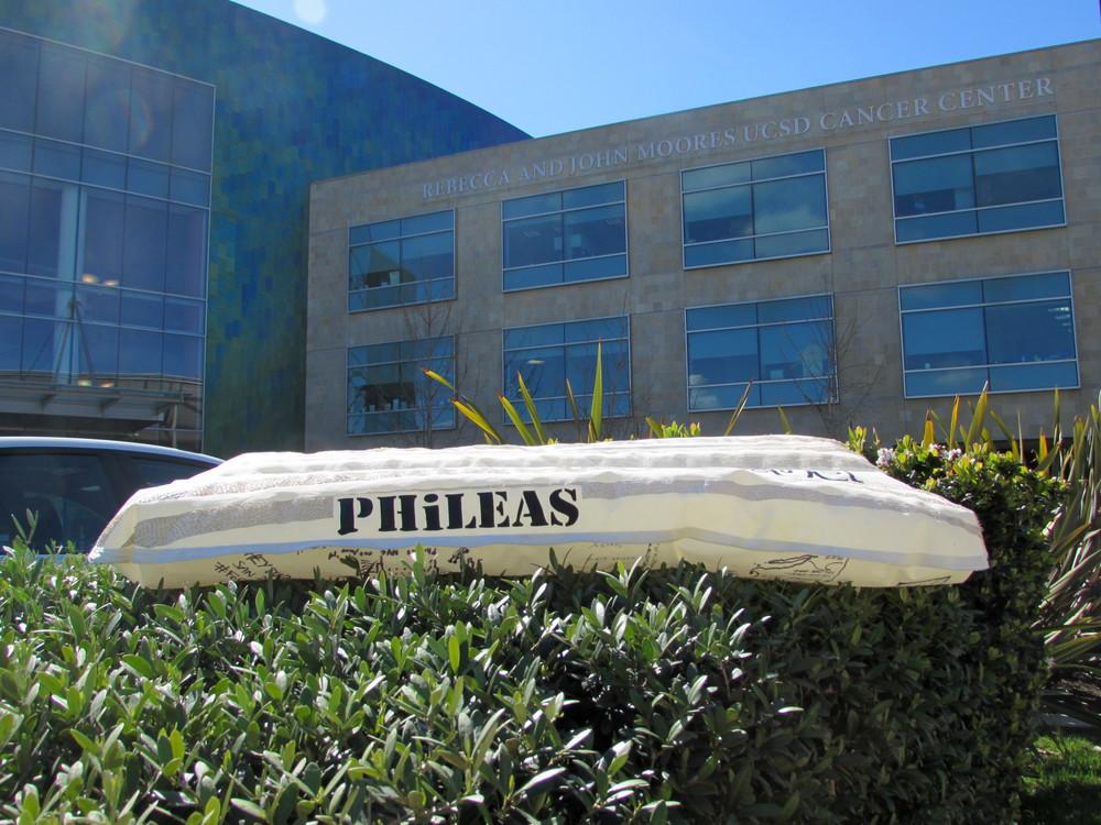 Phileas Surfmat Hospital 574345442