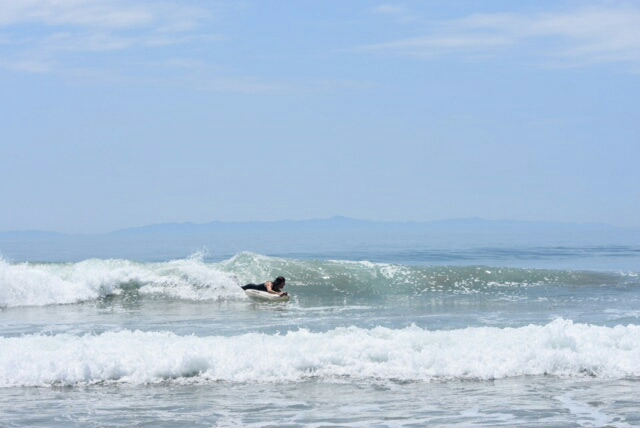 Surf mat surfmat phileas rincon Matt Herman 346