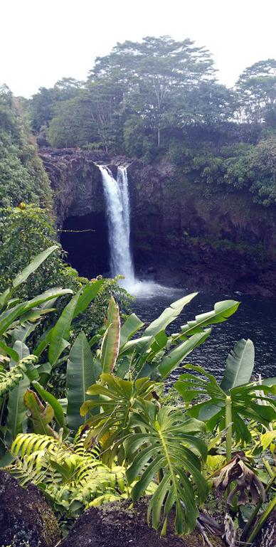 Rainbow Falls, Hilo