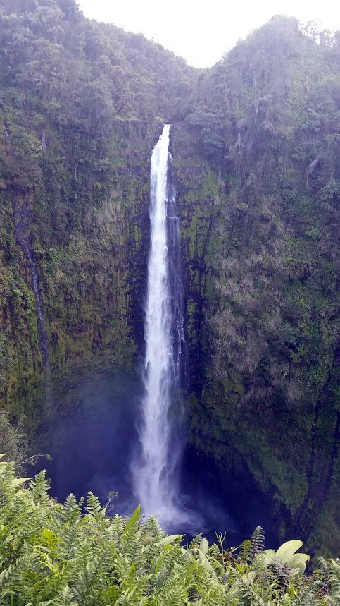 Akaka Falls, Hamakua Coast