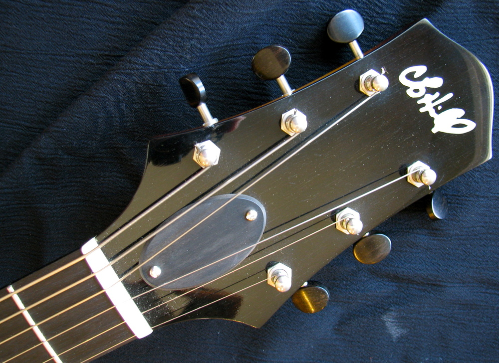 Waverly Tuners.  Ebony head stock overlay.