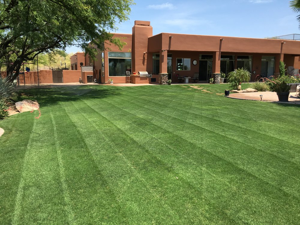 Landscape Maintenance - Yard Services at their best